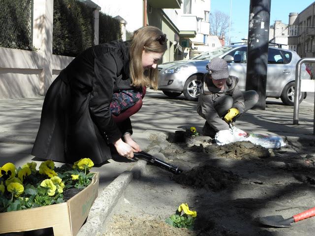Akcja sadzenia kwiatów