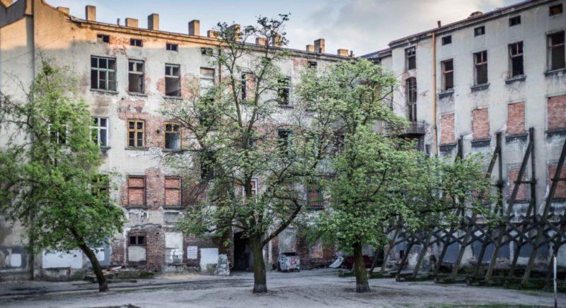 Fot. Zbigniew Polędwica